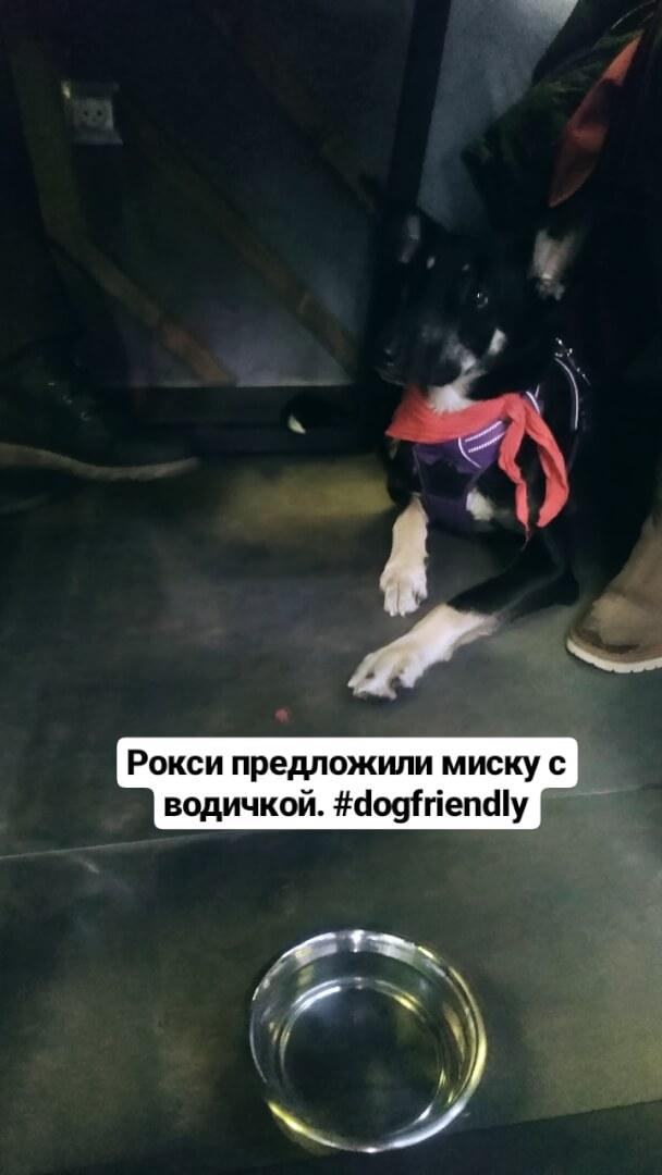 Дядюшка Джо (Joe) на Депутатская ул.,  2,  Ярославль (Рестораны)