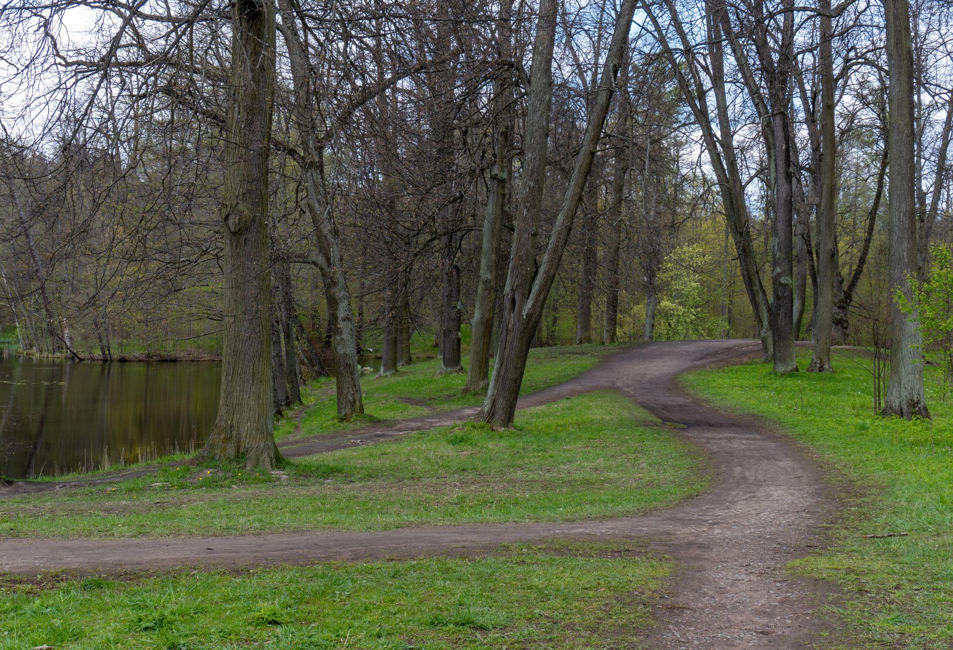 Александрийский (Зверинец) на Александрийский парк,  Unnamed Road,  Петергоф (Парки)