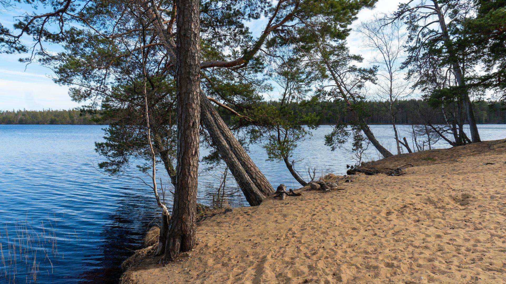 Горовалдайское озеро на 41А-007,  5,  Шепелёво (Озёра и карьеры)