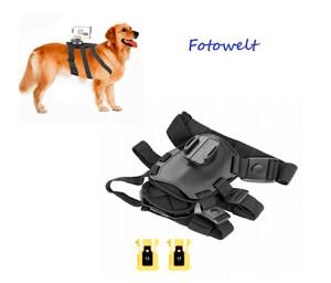 Крепление для видео- и экшн камер на спину собаке