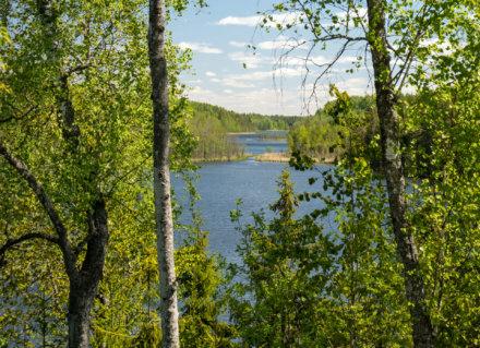 Молосовские озера