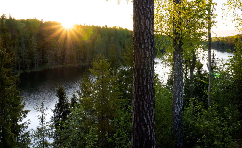 Молосовские озера на Unnamed Road,  Ленинградская обл. (Озёра и карьеры)