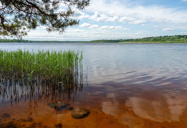 Пляж на Орлинском озере