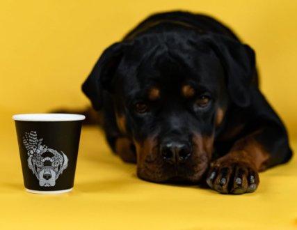 "Кафе ""Barking Lot"""