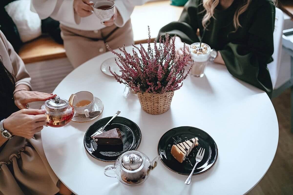 Кафейня Фламинго в Вологде с собакой