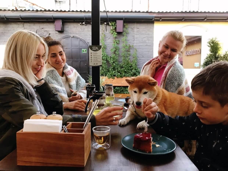 22a Bar&Kitchen на ул. Большая Московская ул.,  22а (Бары)