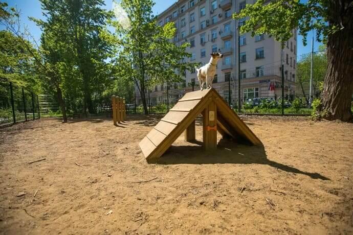 В парке Красногвардейские пруды на Красногвардейский б-р,  12 (Площадки для собак)