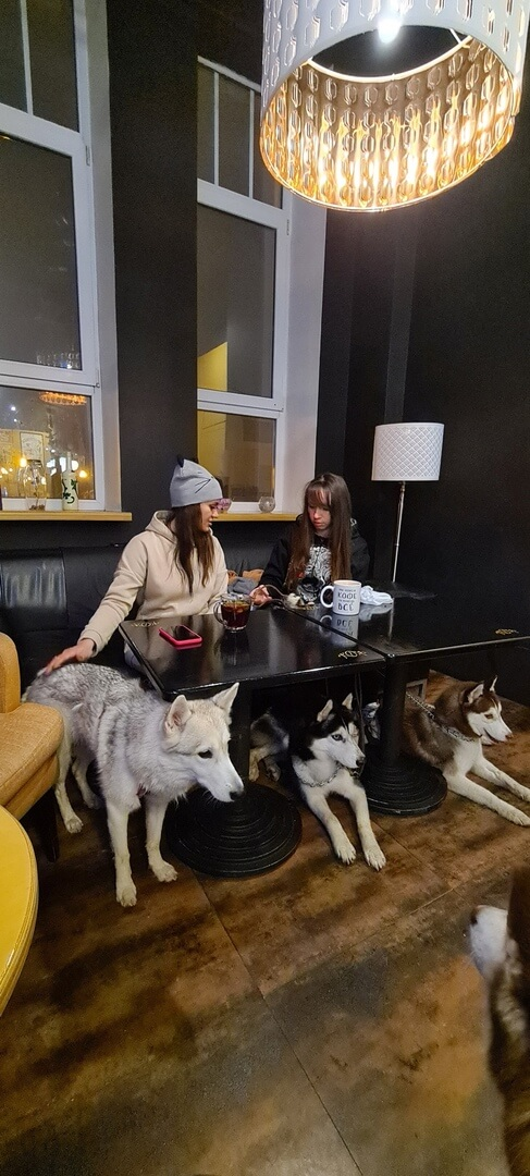 Coffee Bean на Победы на ул. Победы,  77,  Белгород (Кафе)