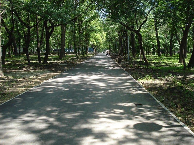 Чистяковская роща на ул. Колхозная,  86 (Парки)
