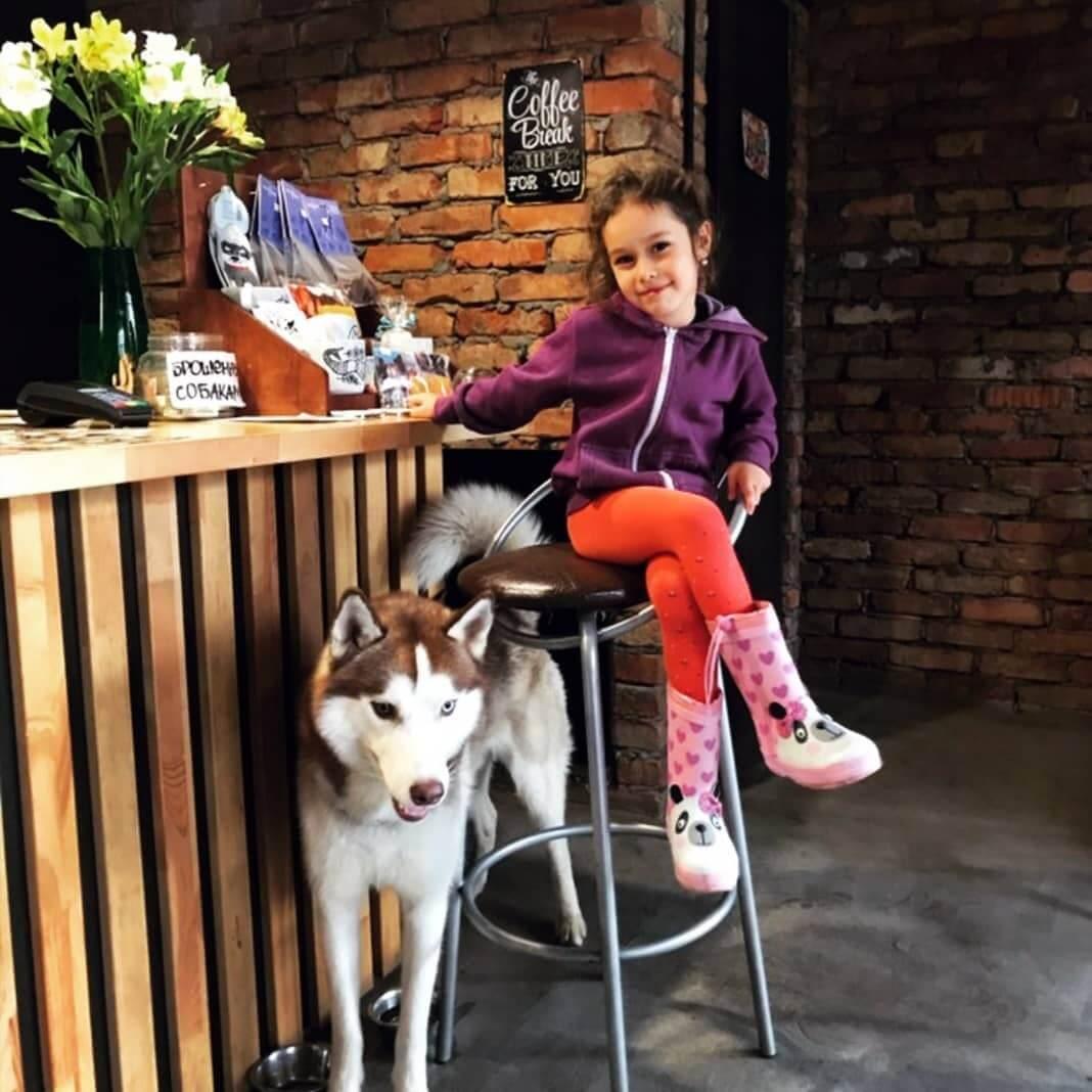 Stardogs Coffee на ул. Мира,  30 (Кафе)