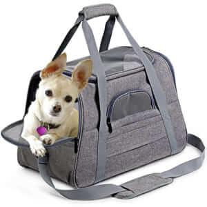 Удобная переносная сумка для собак и кошек