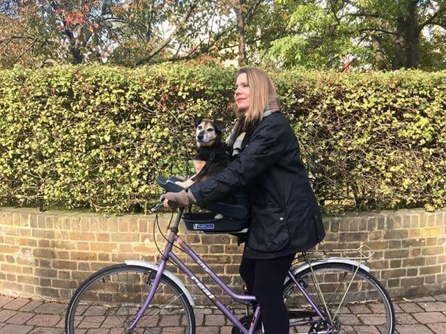 Сиденье для собак на велосипед